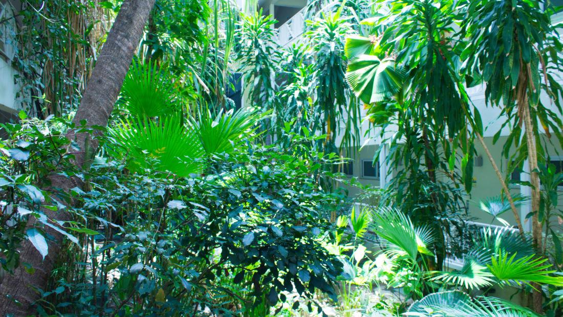 Gardenas 3 Canon edited