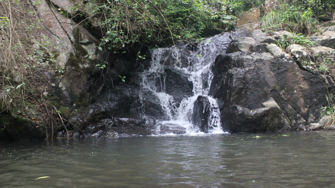 Let s Camp Yercaud activity stream