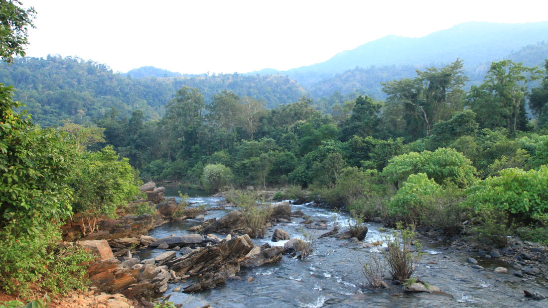 Around Lulung Aranya Nivas