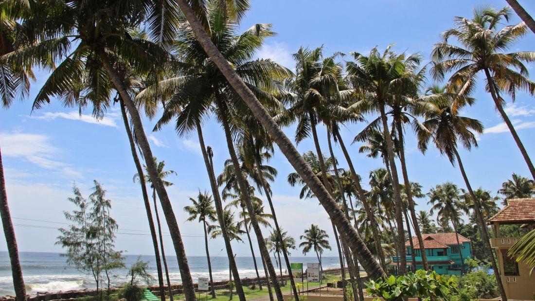 Hotels In Cherai, Sapphire Club Cherai Beach Villa,Cherai Hotel 71