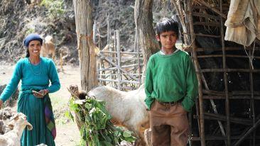 Forrest Rajaji National Park Resort Dehradun  IMG 0398