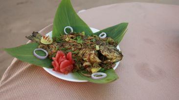 Cafe in Konark 2, Lotus Eco Beach Resort, Hotels in Konark