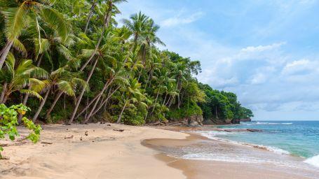 Best Andaman Resort Offers