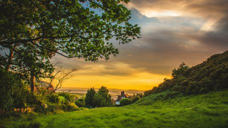 green-trees-under-blue-and-orange-sky-during-sunset-1107717