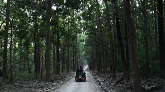 Renest jim corbett