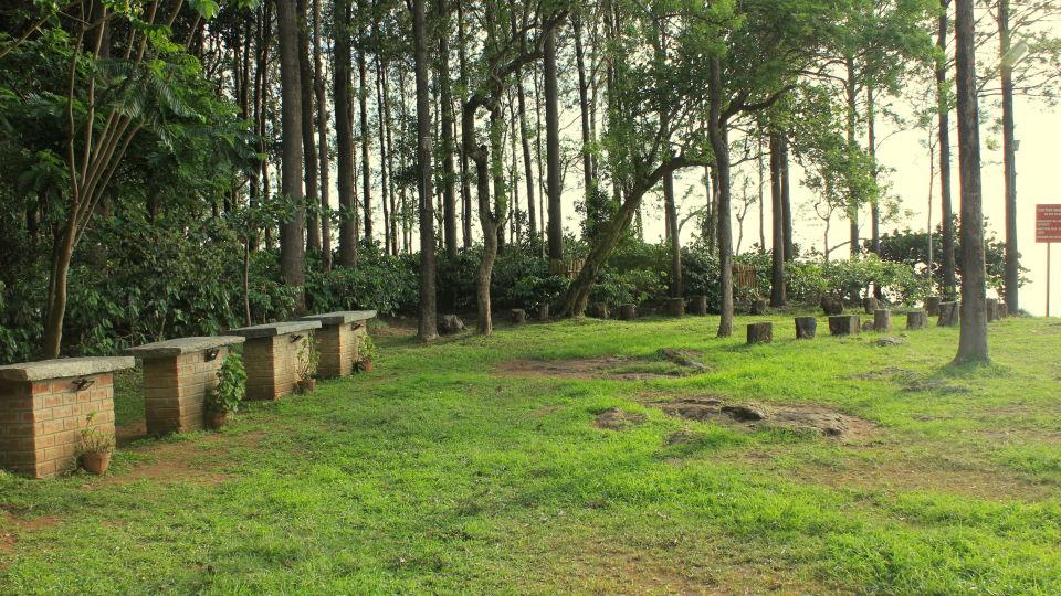 Heaven's Ledge - Campsite, Yercaud Yercaud Buffet Tables and Sit out heavens ledge campsite yercaud