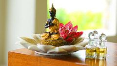 The Golden Flower Spa Therapies The golden tusk rsort ramnagar resorts in Jim corbett 4
