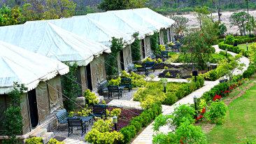 Luxury Tent at the golden tusk resort ramnagar, resort in ramnagar 2