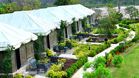 Luxury Tent at the golden tusk resort ramnagar Jim corbett resorts 4