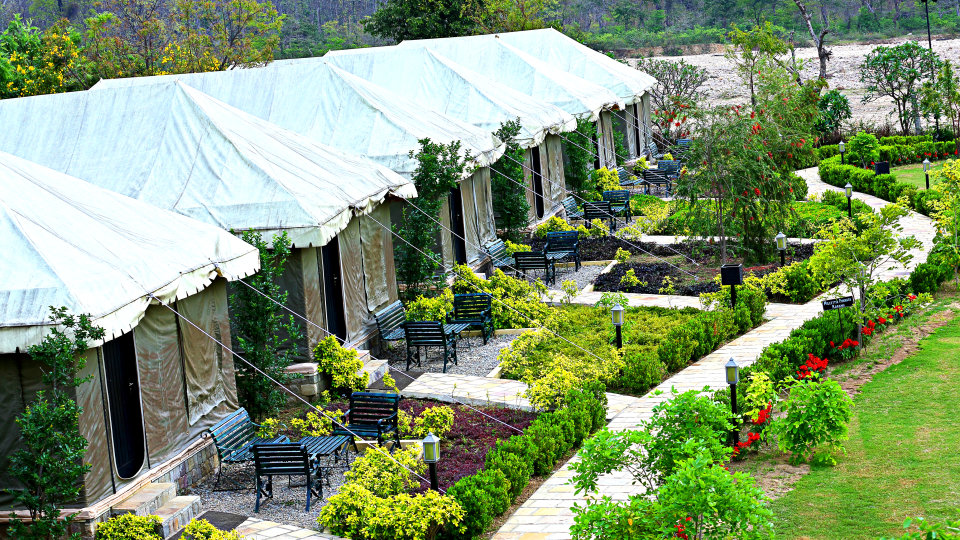Luxury Tent at the golden tusk resort ramnagar, resort in ramnagar 2