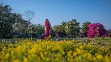 Karma Lakelands Organic Farming in Gurgaon Organic Farming Techniques 11