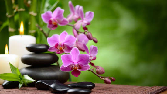Eco friendly hotel orchid hotel mumbai vile parle - 5 star hotel near mumbai airport