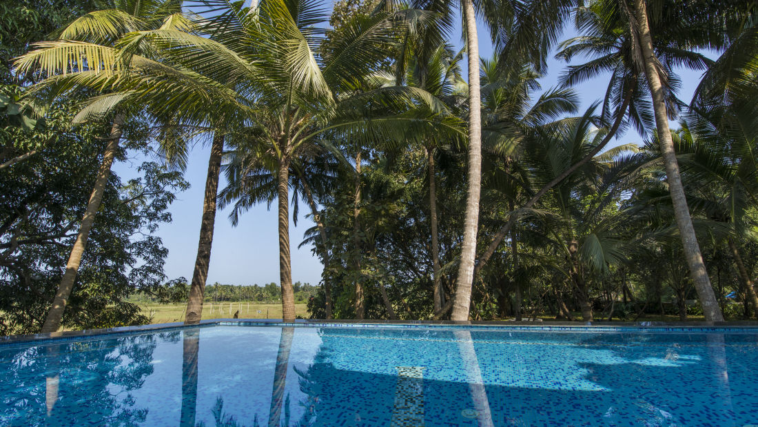Swimming Pool | Bara Bungalow, South Goa 8