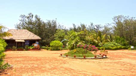 Lotus Eco Resort Konark, Konark, Lotus Eco Resort Konarak 6