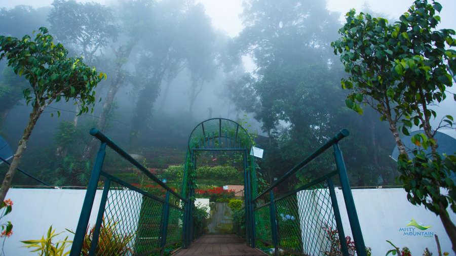 Misty Mountain Resort, Munnar Munnar Bridge from terrace Misty Mountain Resort Munnar 2
