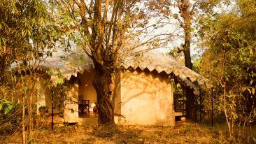 Cottage at Infinity Resorts Kanha, Cottages in Kanha