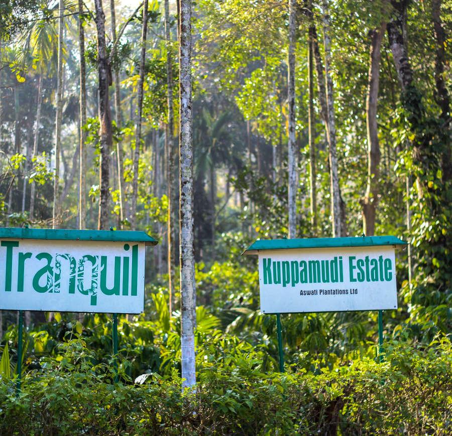 alt-text Tranquil Resort, Wayanad Wayanad Coffee Plantation Tranquil Resort Wayanad