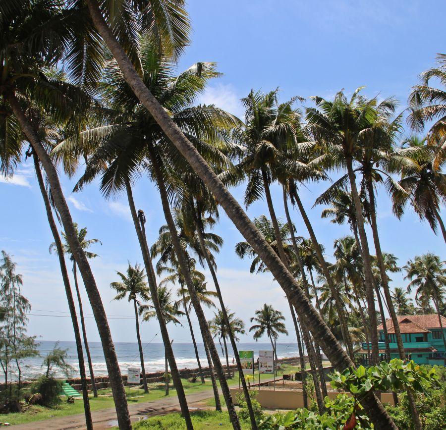 alt-text Hotels In Cherai, Sapphire Club Cherai Beach Villa,Cherai Hotel 71