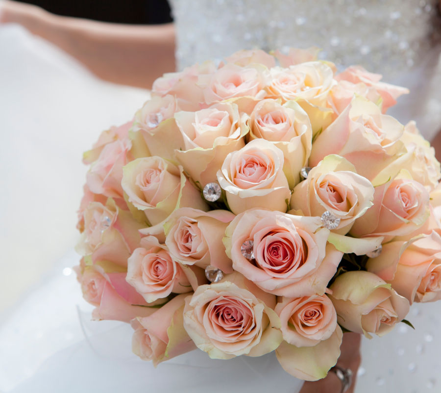 alt-text Canva - Close-up of Pink Rose Bouquet
