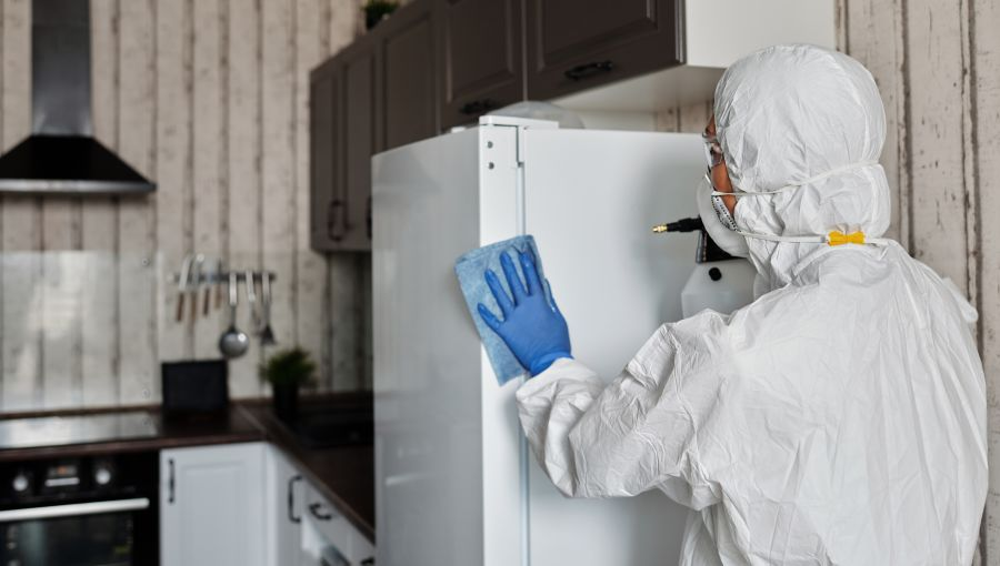 alt-text person-in-a-protective-suit-disinfecting-inside-the-house-4099260
