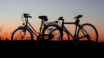 bicycles-cyclist-dawn-289869