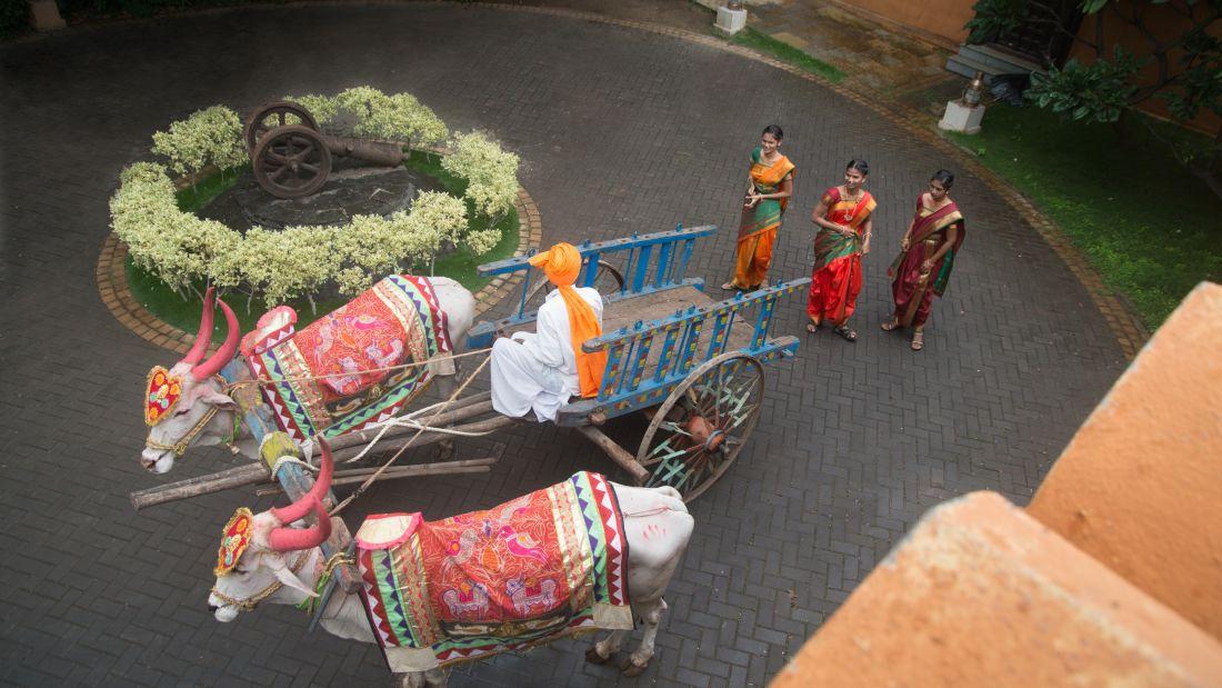 Bullock Cart 4