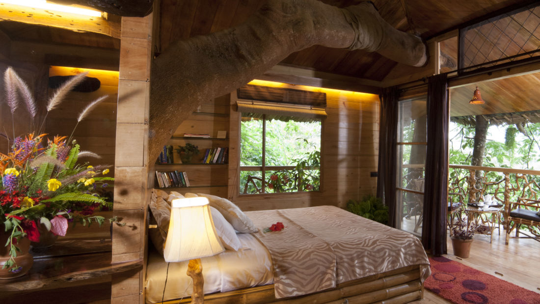 Tree House Tranquil Resort Wayanad7