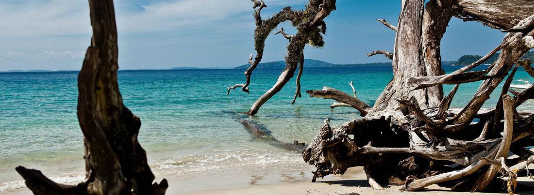 20 In Around Elephant Beach Havelock Island ariiom