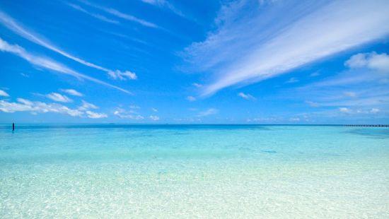 Kakolem Beach Hotels in Goa Larisa Beach Resorts Goa