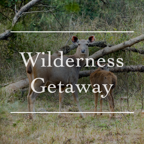 Leisure Hotels  Leisure Hotels Wilderness Getaway Offer