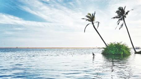 Poovar Estuary Niraamaya Retreats Surya Samudra Kovalam