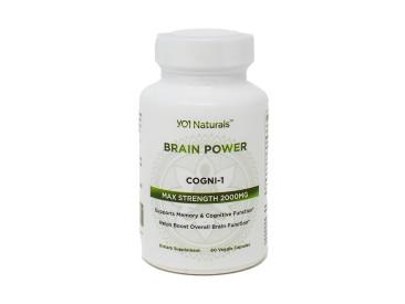 Brain Power1 1