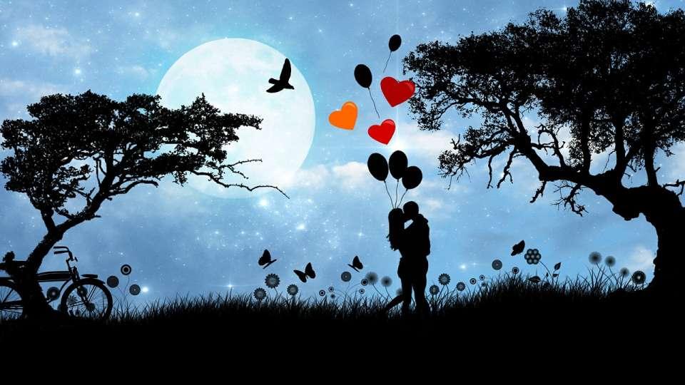 Honeymoon Package at Larisa Mountain Resort in Manali -  honeymoon packages in manali