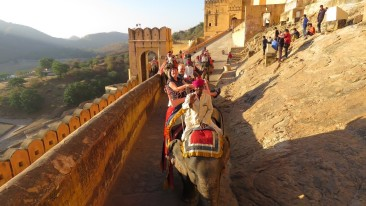 Amber Fort Sarovar Hotels - India s Leading Hotel Chain 2