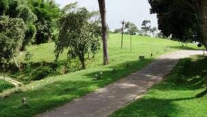 Top Slip Pollachi -near Gokulam Park Coimbatore