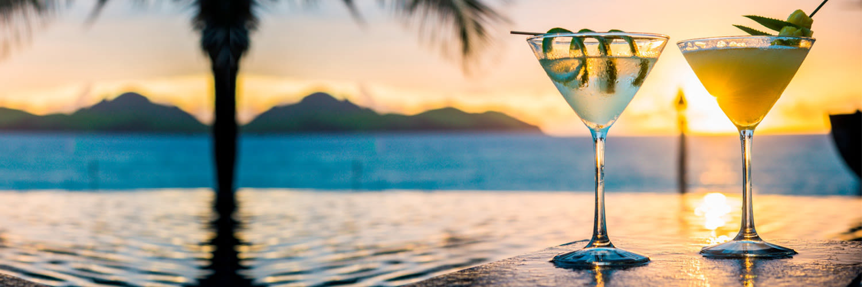 cocktaildinner