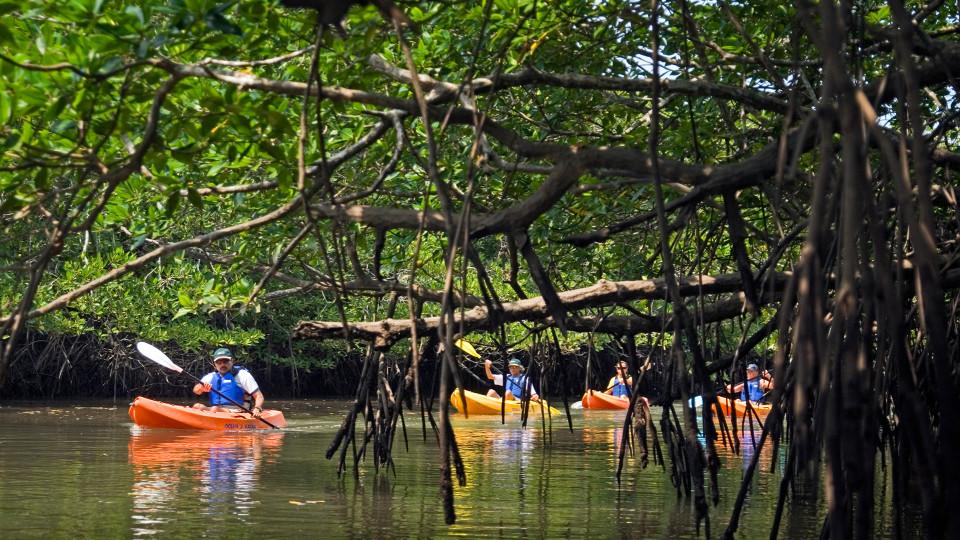 26 Experiences Kayaking