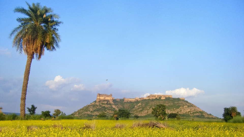 Tijara Fort-Palace - 19th Century, Alwar Alwar Tijara Fort-Palace Alwar Rajasthan 23