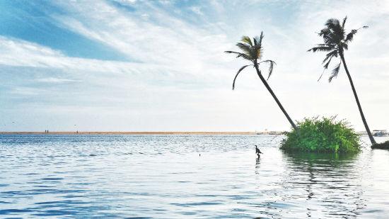 Kerala lake 1