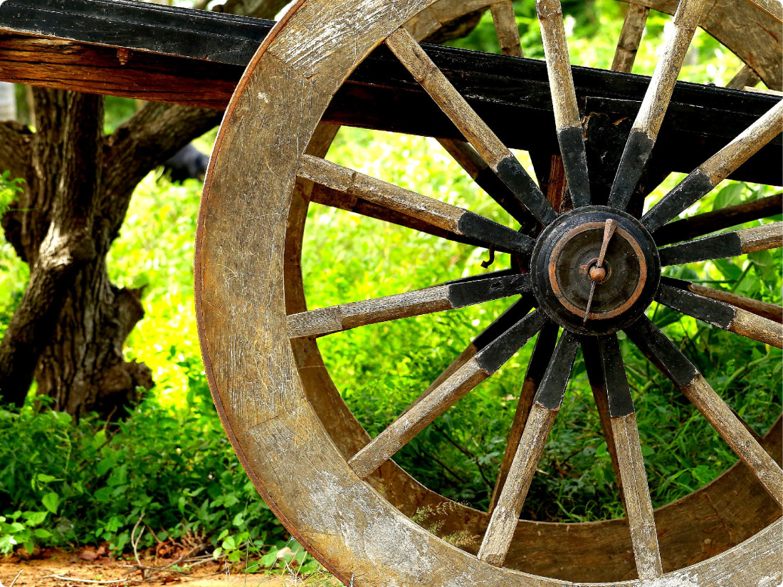 Bullock Cart Ride, Experiences at The Serai Bandipur, Resorts in Bandipur, Weekend Getaways From Bangalore