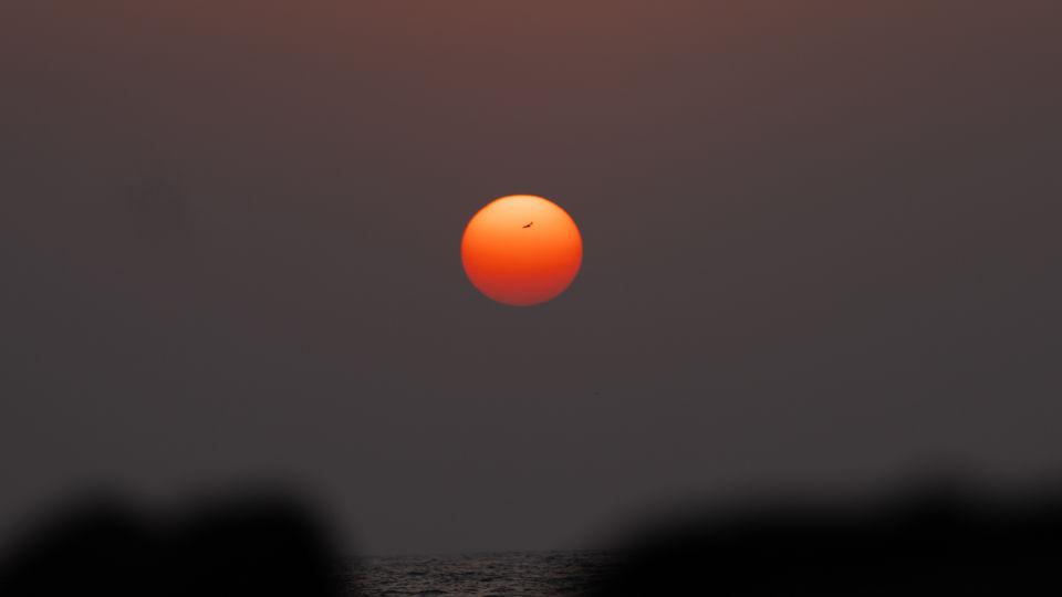 Gallery, Living Room Beach Resort, Goa, Morjim Resort 6