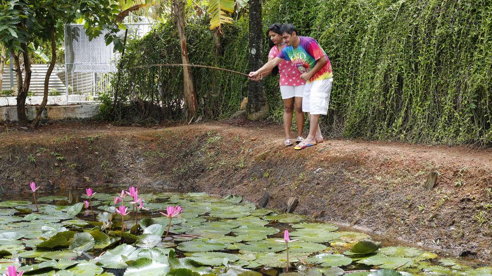 Renai Green Fields Kumarakom Resort 6