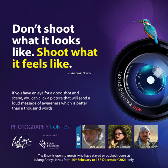 Photography Contest Lulung Social-Media post  1