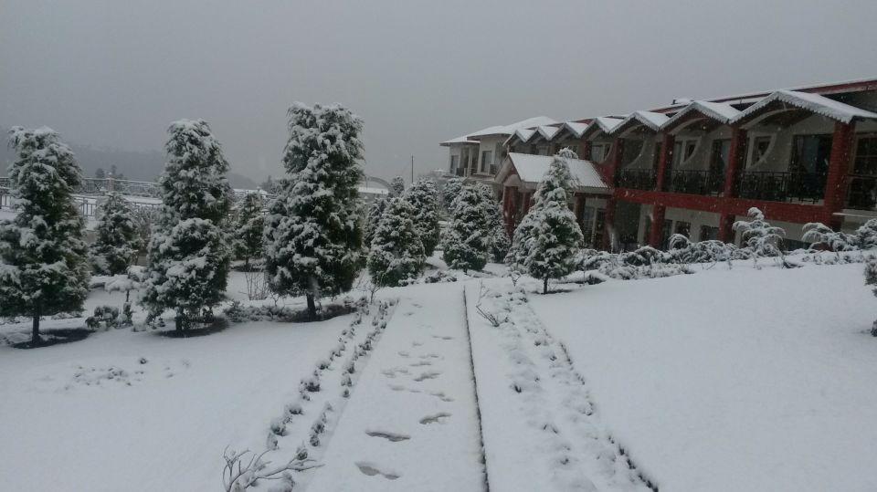 Ojaswi Resort, Chaukori Chaukori Snow Capped 5 Ojaswi Hotel and Resort in Chaukori