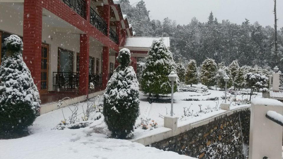 Ojaswi Resort, Chaukori Chaukori Snow Capped Ojaswi Hotel and Resort in Chaukori