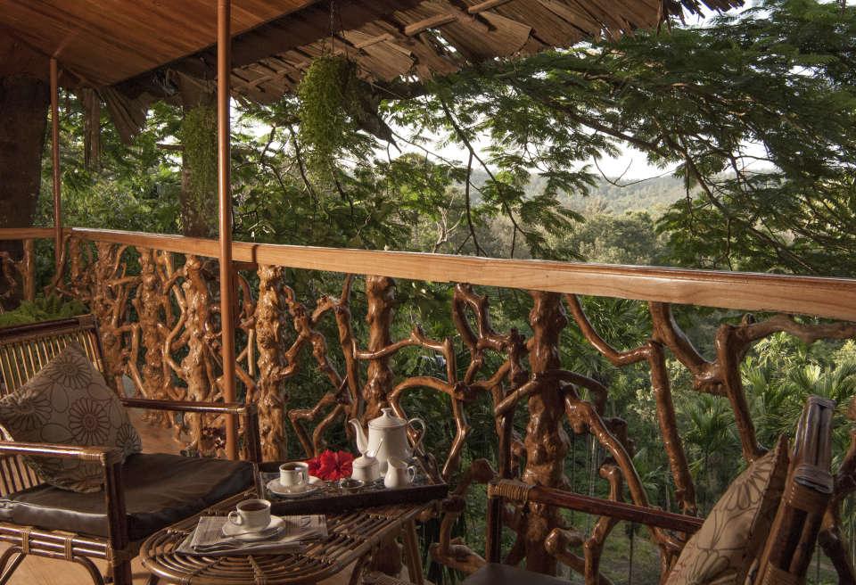 Gallery | Tranquil Resort, Wayanad | Tranquil Resort, kerala