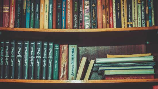 Library1 7 Pines - Solan Himachal Pradesh