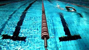 athlete-fitness-leisure-261185