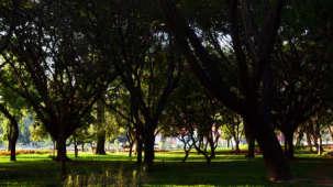 Royal Serenity Hotels, Bangalore  Cubbon Park Royal Serenity Hotels Bangalore