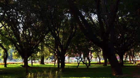 Royal Serenity Hotels, Bangalore  Cubbon Park